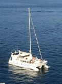 2012 Custom Trimaran de Voyage en Alu