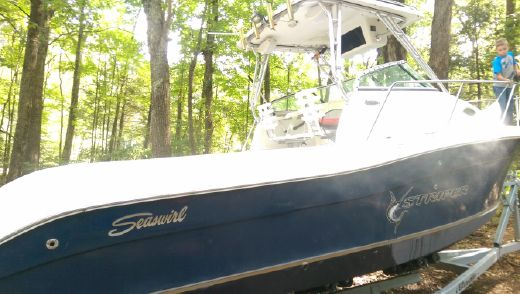 2006 Striper Seaswirl
