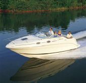 2001 Sea Ray 240 Sundancer