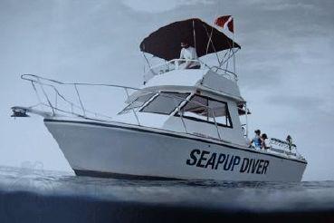 2011 Island Hopper Fly Bridge - Dive