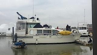 1985 42 Bertram Motor Yacht
