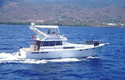 1989 Bayliner 3870 Motoryacht