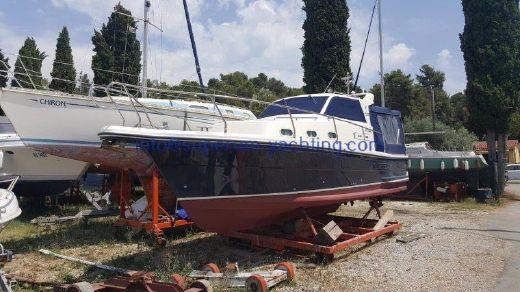 2005 Piculjan 880
