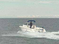photo of  23' Wellcraft 238 Coastal Walkaround