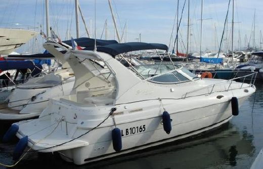 1999 Cruisers Rogue 3070