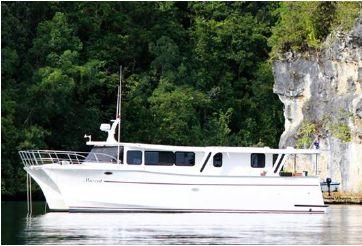 2011 Custom Power Cat 47