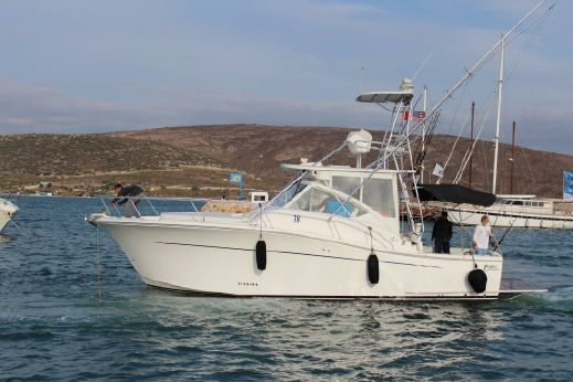 2010 Luhrs 37 IPS Canyon Series
