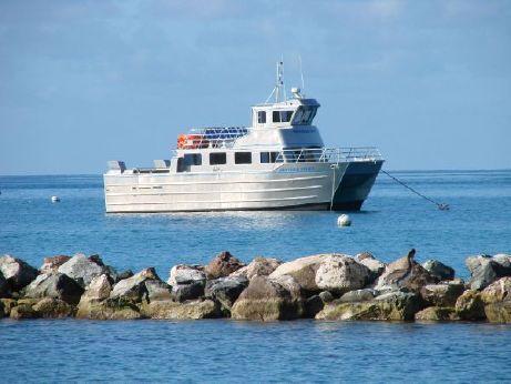 2010 Armstrong Marine Catamaran