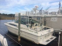 1989 Sea Ray 340 Express Cruiser