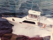 1987 Egg Harbor 41 Sport Fisherman