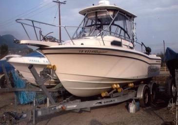 2008 Grady White 228 Seafarer