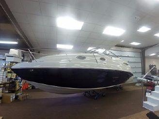 2014 Stingray 250 CS