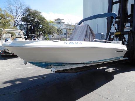 2008 Triumph 190 Bay