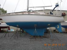 1988 Bristol 31.1