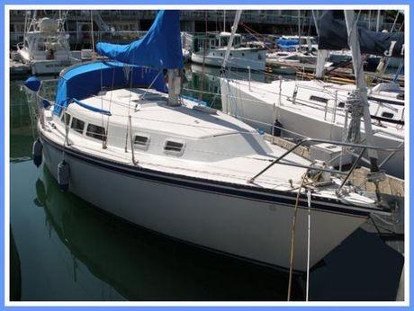 1986 33 Newport 33