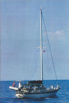 1980 Trintella TRINTELLA 38
