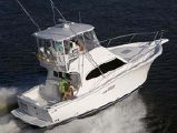 photo of 36' Luhrs 35 Convertible