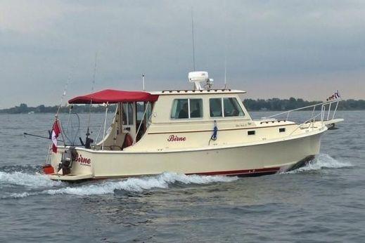 1986 Blue Seas 31 Hardtop