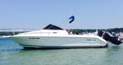 1996 Sea Ray Laguna 24 Flushdeck Cuddy