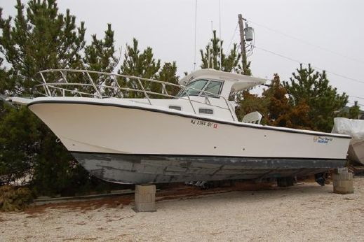 2004 True World Marine 288