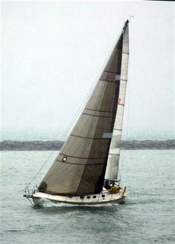 1989 Caliber 33