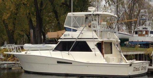 1989 Viking Yachts Convertible