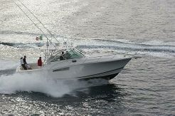 2005 Wellcraft 360 Coastal
