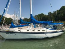 1983 Hunter 37' Cherubini Cutter