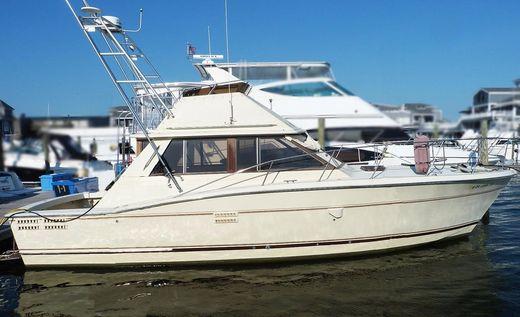 1984 Trojan (viking Ocean Jersey) Convertible