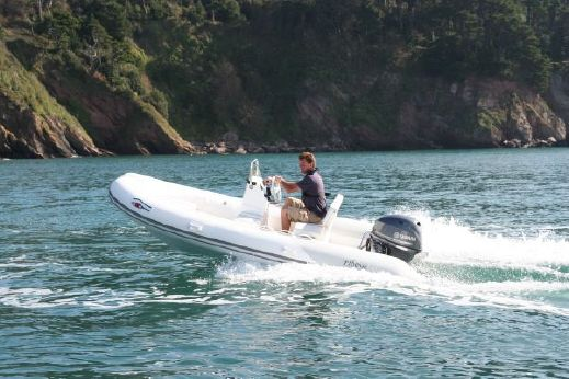 2012 Ribeye TS 430