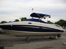 2010 Sea Ray 300 Sundeck
