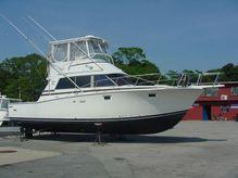 1981 Bertram 38 III Convertible
