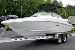 2011 Sea Ray SunDeck 220