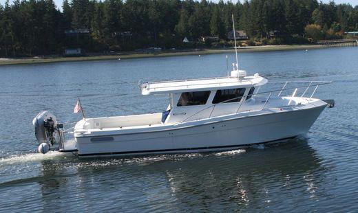 2009 Ocean Sport Roamer 33'