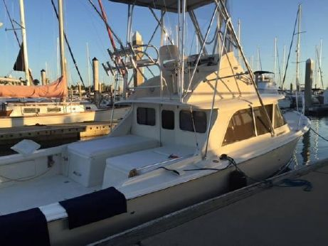 1986 Bertram 31 Flybridge Cruiser