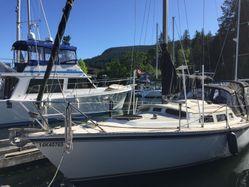 photo of  33' Newport 33
