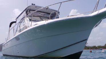 2008 Sea Fox 287