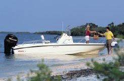 2008 Boston Whaler 200 Dauntless