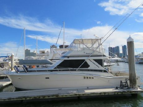1987 Chris Craft 12.8 m