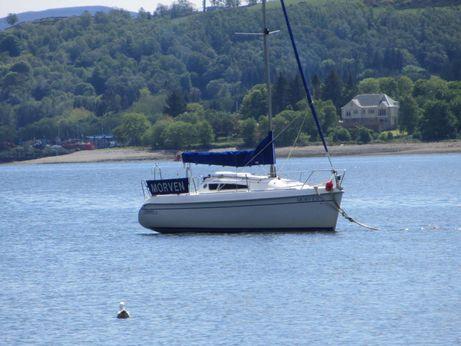 2003 Sportina 730 Trailer/sailer