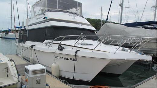 2006 Powercat 3800