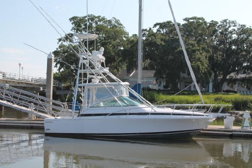 1995 Bertram 30 Moppie Express
