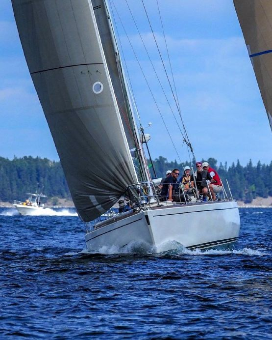 1981 Peterson Custom Sail Boat For Sale - www yachtworld com