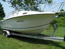 1999 Sea Pro 235 Walk Around