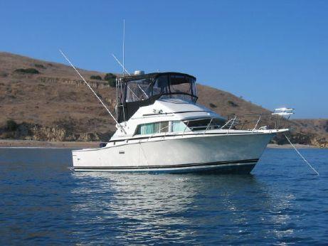 1985 Bertram 33 Sport Fisherman