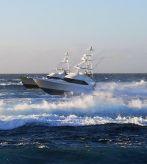 2010 Viking 46 Convertible