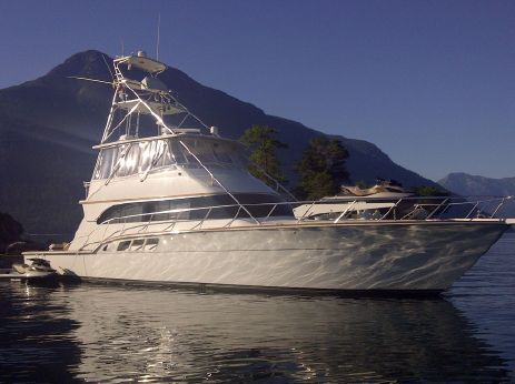 1988 Donzi 65 Sportfish