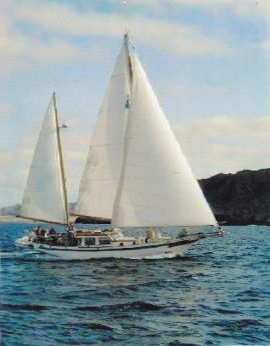 1972 Ta Chiao 41