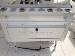 photo of  Intrepid 350 Walkaround
