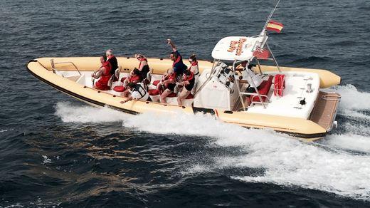 2005 Cougar R10